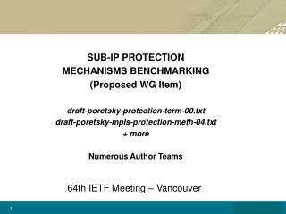 SUB-IP PROTECTION  MECHANISMS BENCHMARKING (Proposed WG Item)