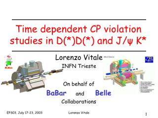 Time dependent CP violation studies in D(*)D(*) and J/ψ K*