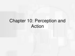 Chapter 10: Perception and Action