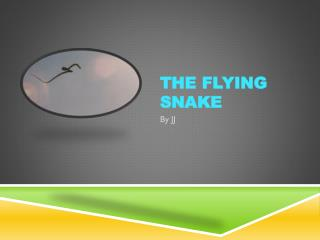 The Flying Snake