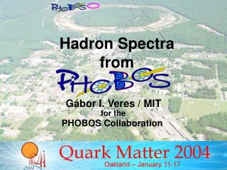 Hadron Spectra  from