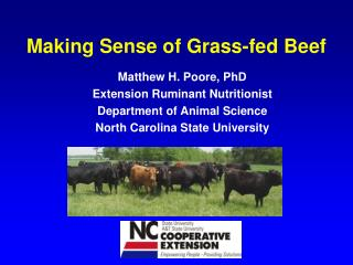 Making Sense of Grass-fed Beef