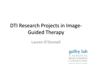 DTI Research Projects in Image-Guided Therapy