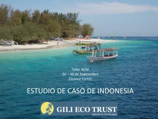 Taller ACM 26 – 30 de  Septiembre Eleanor Carter ESTUDIO DE CASO DE INDONESIA