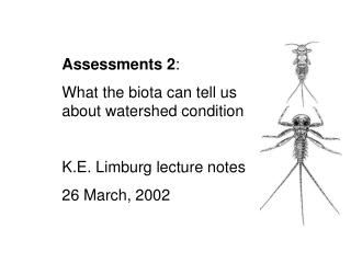 Assessments 2 :  What the biota can tell us about watershed condition K.E. Limburg lecture notes