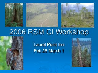 2006 RSM CI Workshop