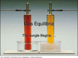Gas Equilibria