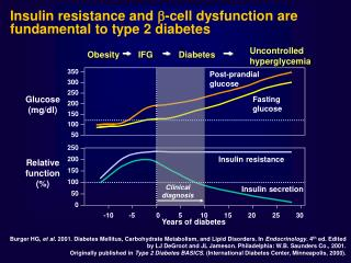 Insulin resistance and   -cell dysfunction are fundamental to type 2 diabetes