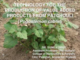 TECHNOLOGY FOR THE PRODUCTION OF VALUE ADDED PRODUCTS FROM PATCHOULI ( Pogostemon cablin )
