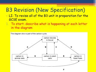 B3 Revision (New Specification)