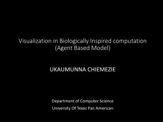 Visualization in Biologically Inspired computation (Agent Based Model)