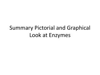 Summary Pictorial and Graphical Look at Enzymes