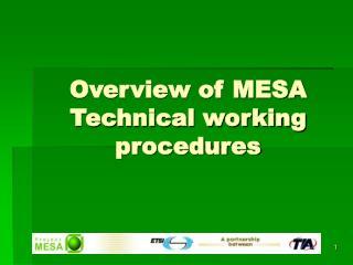 Overview of MESA Technical working procedures