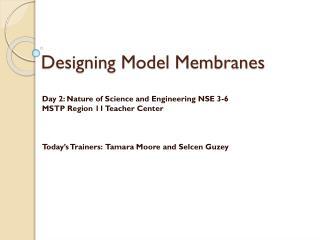 Designing Model Membranes