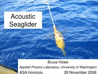 Acoustic Seaglider
