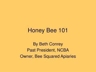 Honey Bee 101