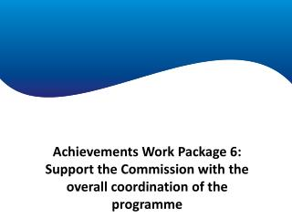 Achievements Work Package 1