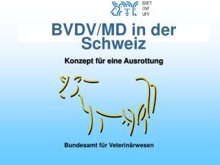 BVDV/MD in der Schweiz