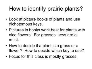 How to identify prairie plants?