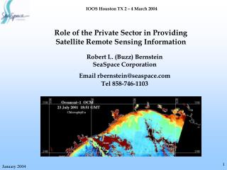 Role of the Private Sector in Providing Satellite Remote Sensing Information