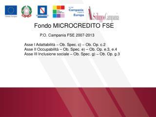 Fondo MICROCREDITO FSE P.O. Campania FSE 2007-2013