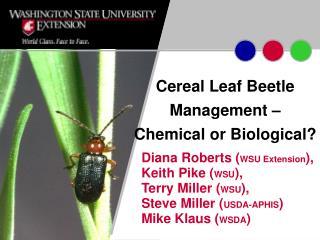 Cereal Leaf Beetle Management – Chemical or Biological?