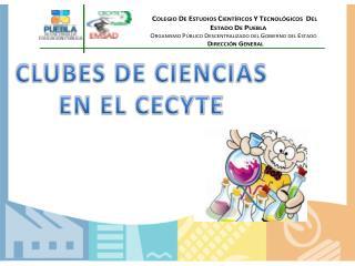 CLUBES DE CIENCIAS  EN EL CECYTE