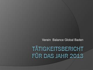 Tätigkeitsbericht  für das Jahr 2013
