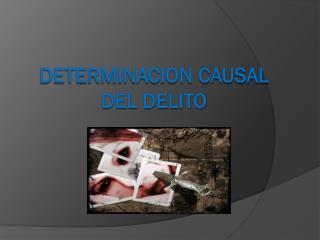 DETERMINACION CAUSAL DEL DELITO