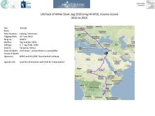 LifeTrack  of White Stork ,tag 2550 (ring HH 873),  Ciconia ciconia 2012 to 2013