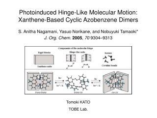 Photoinduced Hinge-Like Molecular Motion: Xanthene-Based Cyclic Azobenzene Dimers