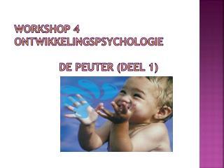 wORKSHOP  4 ontwikkelingspsychologie De PEUTER (deel 1)