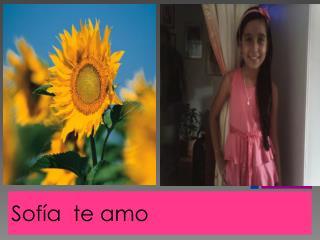 Sofía  te amo