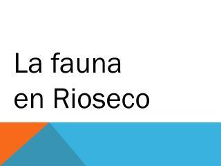 La fauna en Rioseco