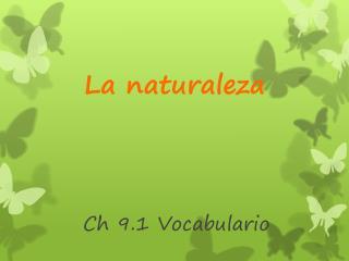Ch  9.1  Vocabulario