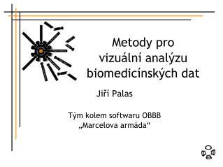 Metody pro vizuální analýzu biomedicínských dat