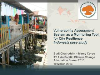 Vulnerability Assessment System as a Monitoring  Tool  for City Resilience  Indonesia case study