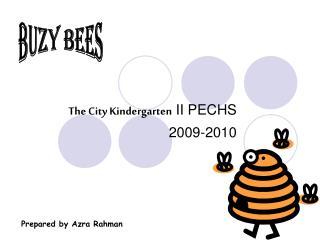 The City Kindergarten  II PECHS 2009-2010