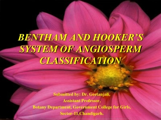 BENTHAM AND HOOKER S SYSTEM OF ANGIOSPERM CLASSIFICATION