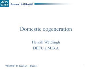 Domestic cogeneration