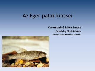 Az Eger-patak kincsei
