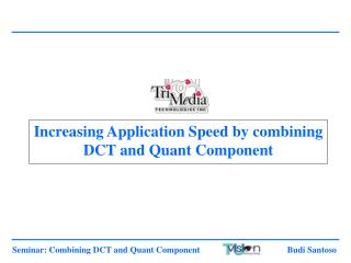 Increasing Application Speed by combining DCT and Quant Component