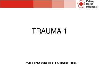 TRAUMA 1