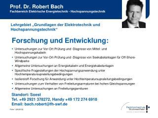 Prof. Dr. Robert Bach Fachbereich Elektrische Energietechnik - Hochspannungstechnik