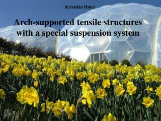 Arch-supported tensile structures with a special suspension system