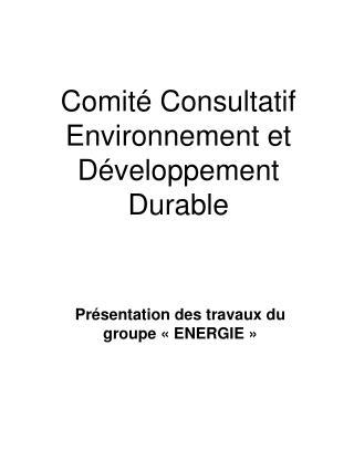 Comité Consultatif Environnement et Développement Durable