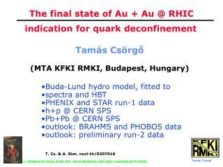 The final state of Au + Au @ RHIC