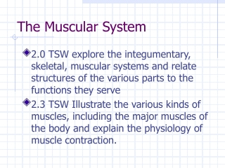 Skeletal Muscular Systems