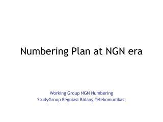 Numbering Plan at NGN era