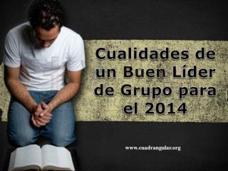 Cualidades de un Buen Líder de Grupo para el 2014